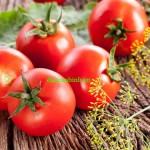 Cà chua giúp làm giảm cholesterol