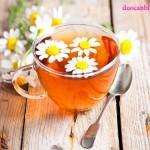 Trà hoa cúc tốt cho phụ nữ mang thai