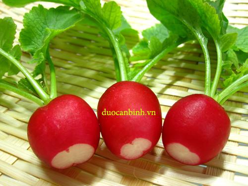 Củ cải đường giúp giải độc cơ thể