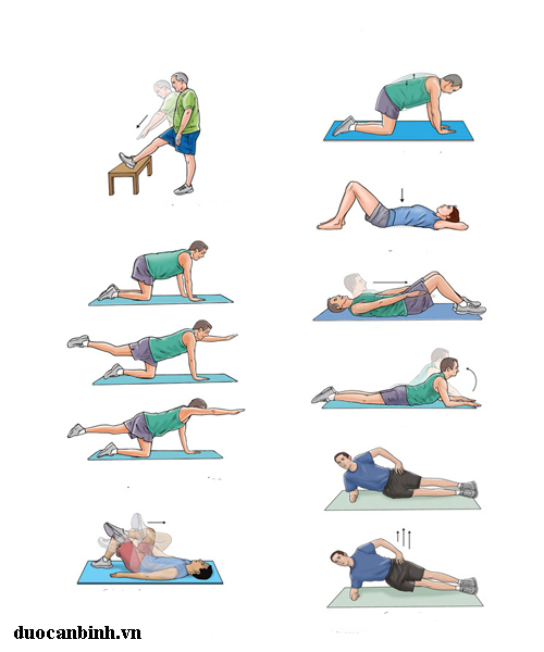 low+back+pain+exercises