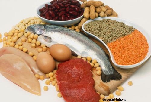 thực phẩm protein