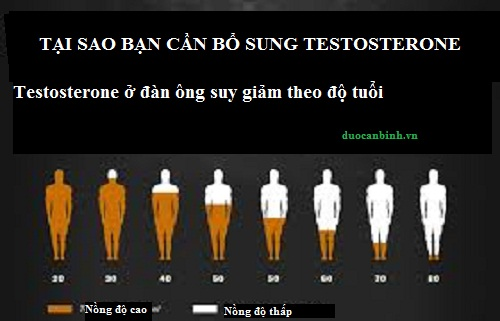 tac-hai-suy-giam-testosterone_1